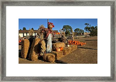 Framed Print featuring the photograph Guarding The Pumpkin Patch by Michael Gordon