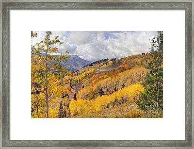 Guardsman Pass Aspen - Big Cottonwood Canyon - Utah Framed Print