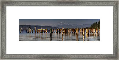 Guemes Channel Trail Panorama Framed Print by Mark Kiver