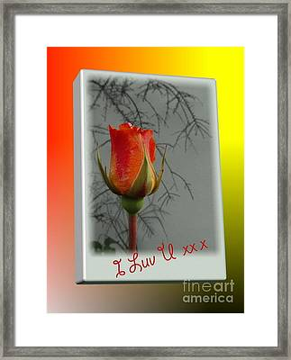 Guess Who Framed Print by Val Byrne
