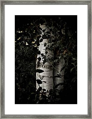 Guided By Light Framed Print