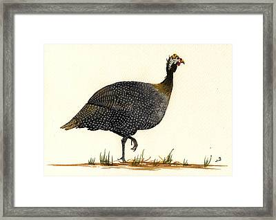 Guinea Fowl Framed Print by Juan  Bosco