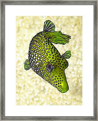 Guinea Fowl Puffer Fish In Green Framed Print