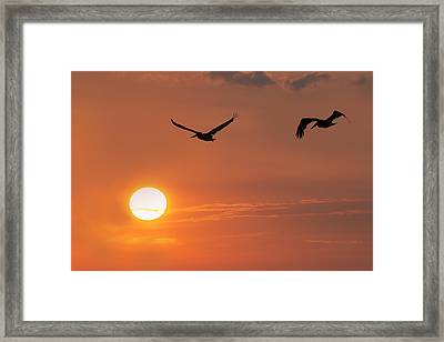 Gulf Coast Sunset Framed Print