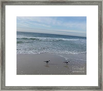 Gulf Shore  Framed Print by Deborah DeLaBarre