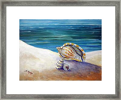 Gulf Shores And Shells II Framed Print