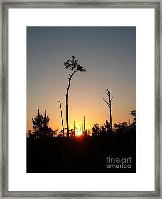 Gulf Shores Sunset Framed Print