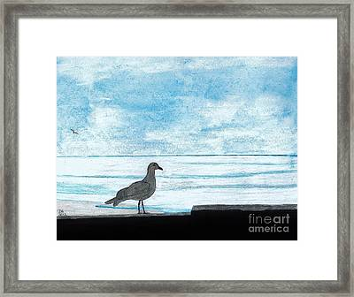 Seagull - By The - Sea Framed Print