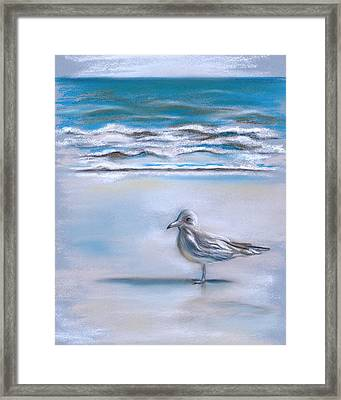 Gull On The Shore Framed Print by MM Anderson