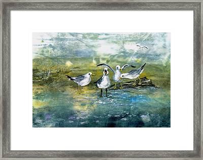 Gull Quartet Framed Print