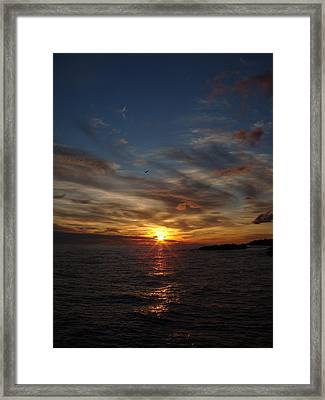 Framed Print featuring the photograph Gull Rise by Bonfire Photography