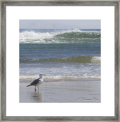 Gull With Parallel Waves Framed Print