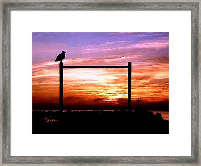 Gullpost Framed Print by Sadie Reneau