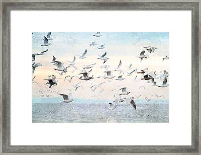 Gulls Flying Over The Ocean Framed Print by Peggy Collins