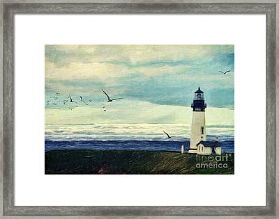 Gulls Way Framed Print by Lianne Schneider