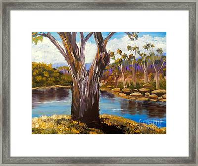 Gum Trees Of The Snowy River Framed Print by Pamela  Meredith