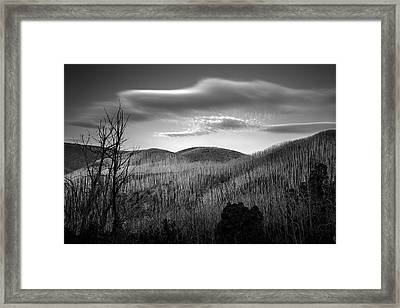 Gums Of Grey Framed Print