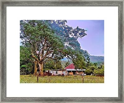 Gumtree Gully Framed Print by Wallaroo Images
