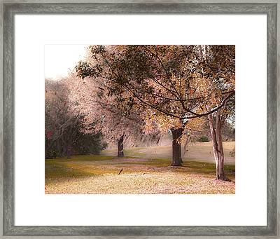 Gusty Afternoon Framed Print