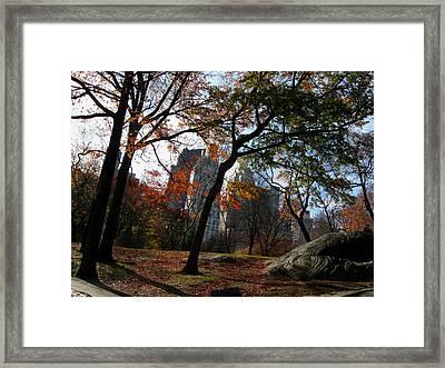 Guy On A Rock In Central Park Framed Print