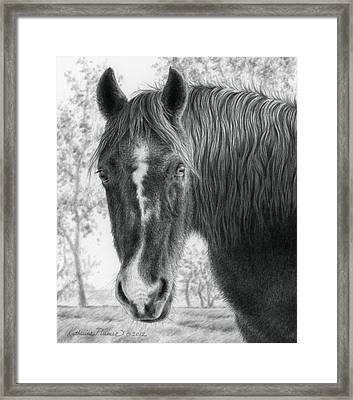 Gwen In The Late Fall Framed Print