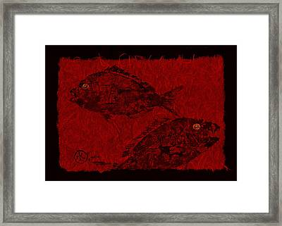 Gyotaku Scup Series 1  Red Unryu Paper Framed Print by Jeffrey Canha