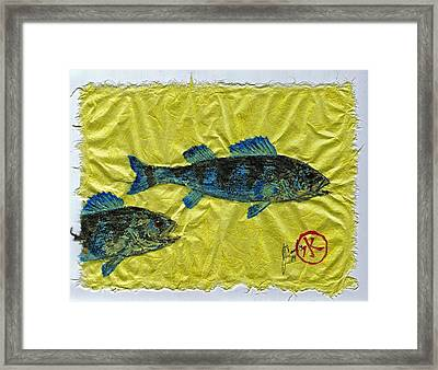 Gyotaku - Yellow Perch - Bluefish Framed Print