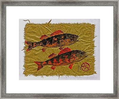 Gyotaku - Yellow Perch - Orange Roughy Framed Print