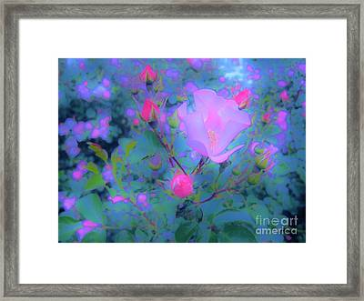 Gypsy Rose - Flora - Garden Framed Print by Susan Carella