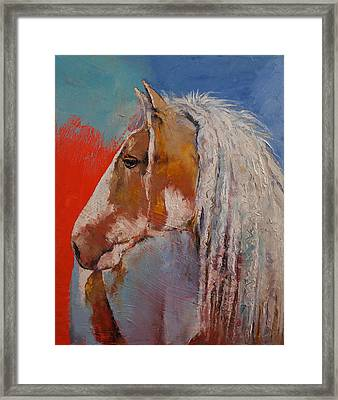 Gypsy Vanner Framed Print by Michael Creese