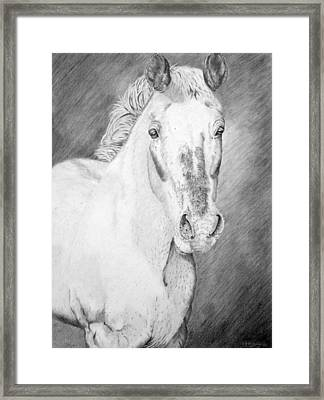 Gypsy Framed Print by Wendi Matson