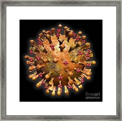H5n1 Virus Framed Print by Scott Camazine