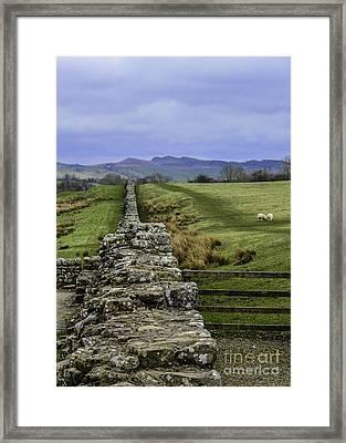 Hadrian's Wall Framed Print by Mary Carol Story