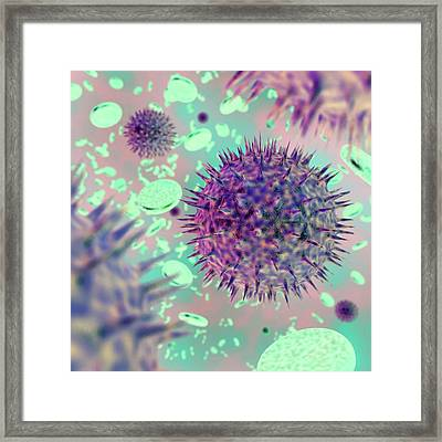 Haemorrhagic Fever Virus Framed Print by Crown Copyright/health & Safety Laboratory Science Photo Library