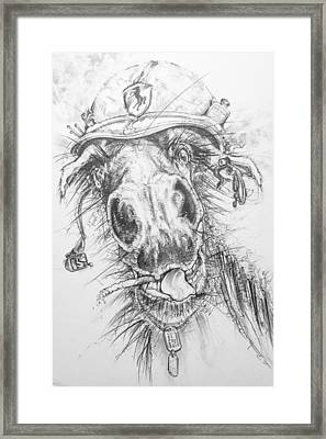 Hair-ied Horse Soilder Framed Print by Scott and Dixie Wiley