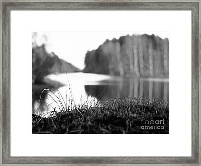 On The Stone Framed Print