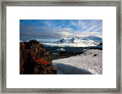 Half Moon Island Antarctica Framed Print