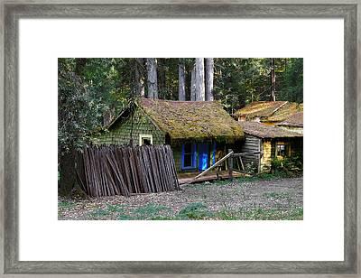 Hales Grove Ca Framed Print by Christine Till