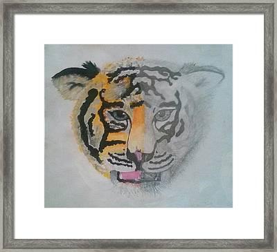 Half And Half Tiger Framed Print by Kendya Battle