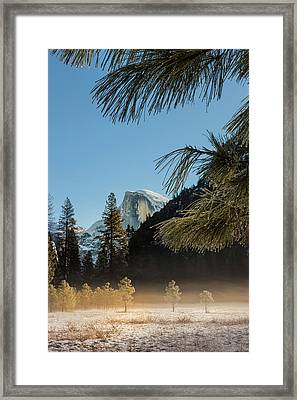 Half Dome From Valley Floor Framed Print by Tom Norring
