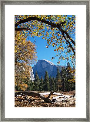 Half Dome In Yosemite Framed Print by Alex Cassels