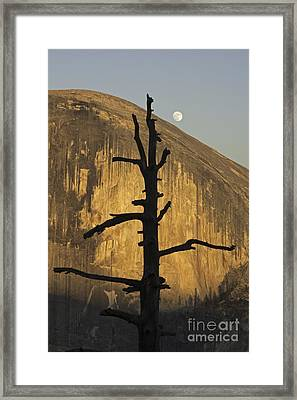 Half Dome With Full Moon Framed Print