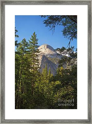 Half Dome Yosemite Framed Print by Jane Rix