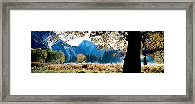 Half Dome, Yosemite National Park Framed Print by Panoramic Images
