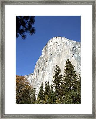 Half Dome Yosemite Framed Print by Richard Reeve
