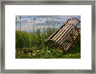 Half Round Lobster Trap Framed Print by Nikolyn McDonald