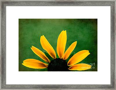 Half Sun - S02ct01 Framed Print by Variance Collections