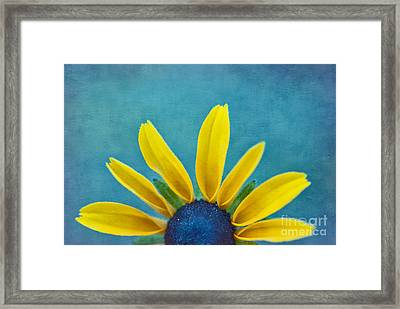 Half Sun - S03dt01a Framed Print by Variance Collections