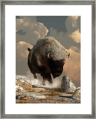 Half White Bison Framed Print by Daniel Eskridge