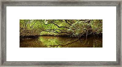 Halfway Creek At Low Tide - Everlglades Framed Print